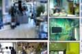 Riprendere i clienti del negozio con la telecamera di sicurezza senza l'avviso costituisce violazione