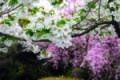 Sicilia, Meteo: è primavera ma martedì torna l'instabilità