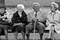 Campobello di Licata, gita gratuita a Siracusa per anziani