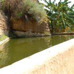 """""""Bene Fai per tutti"""", anche il Giardino della Kolymbethra accessibile ai visitatori con disabilità intellettiva"""