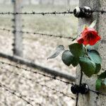 Canicattì, Giorno della Memoria: mozione del Presidente del Consiglio