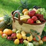 La promozione delle filiere agroalimentari, Distretto Cibo Sud Est presenta progetto da sei milioni