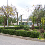 Campobello di Licata, manutenzione ai mezzi per la potatura del verde pubblico