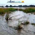 A San Leone è tornata la sabbia nera, la denuncia di MareAmico