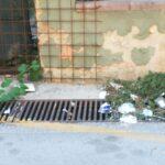 Canicattì, ratti nel quartiere Acquanova: la segnalazione